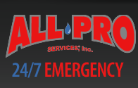 All-Pro Services